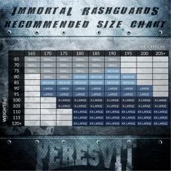 Рашгард Peresvit Immortal Silver Force Rashguard Long Sleeve Dark Marine